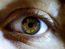 Beautiful macro closeup shot of a female human`s deep eyes. A beautiful macro closeup shot of a female human`s deep eyes royalty free stock photography