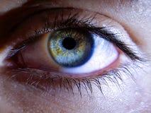 Beautiful macro closeup shot of a female human`s deep eyes. A beautiful macro closeup shot of a female human`s deep eyes stock images