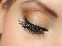 Beautiful macro eye with long lashes,make-up Stock Images