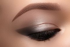 Beautiful Macro Eyes with Smoky Cat Eye Makeup. Cosmetics and Make-up. Closeup of Fashion Visage with Liner, Eyeshadows.  royalty free stock photography