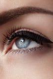Beautiful macro shot of female eye with classic smoky makeup. Perfect shape of eyebrows, brown eyeshadows and long eyelashes Royalty Free Stock Photos