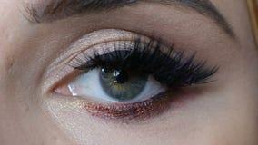 Beautiful macro shot of female eye with extreme long eyelashes. Perfect visage, make-up and long lashes. Beautiful macro shot of female eye with extreme long stock video footage