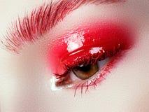 Beautiful macro shot of female eye with extreme long eyelashes Royalty Free Stock Photos