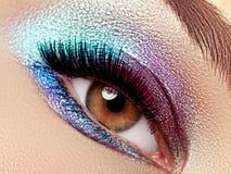 Beautiful macro shot of female eye with extreme long eyelashes Royalty Free Stock Images