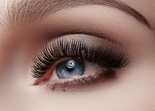 Beautiful macro shot of female eye with smoky makeup. Perfect shape of eyebrows Stock Photos