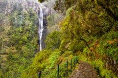 Free Beautiful Madeira Irrigation Levadas Royalty Free Stock Photos - 105635128