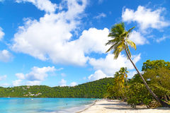 Beautiful Magens Bay beach in the morning on St Thomas Island, US VI. Stock Image