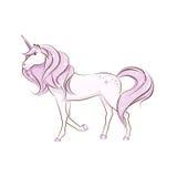 The beautiful magical unicorn. The beautiful magical unicorn is walking. Hand drawing illustration isolated on white background Stock Image
