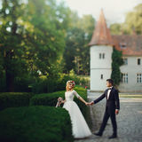 Beautiful magical young bride holding hands handsome groom castl Stock Image