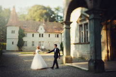 Beautiful magical young bride holding hands handsome groom under Stock Photography