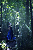 Beautiful magician in mysterious dark forest. Magical atmosphere. Fairytale Royalty Free Stock Images
