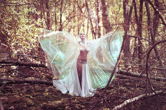 Beautiful magician in mysterious dark forest. Magical atmosphere. Fairytale Stock Image