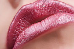 Beautiful make up of bright lips Royalty Free Stock Photos