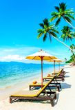 Beautiful Maldive beach with palm trees. Beach chairs on the whi Stock Photo