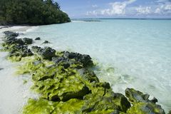 Beautiful maldives beach Stock Photos