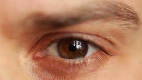 Beautiful male eye stock video