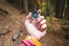 A beautiful male hand with a yellow watch strap holds a magnetic compass in the coniferous autumn forest. The concept of. Finding yourself the way and truth royalty free stock photo