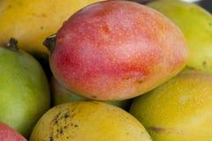 Beautiful Mangos Stock Photography