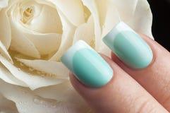 Beautiful manicure. Stock Photos