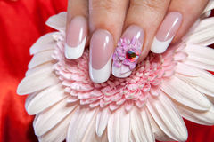 Beautiful manicure Royalty Free Stock Photos