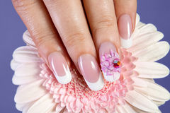 Beautiful manicure with flower design Royalty Free Stock Image