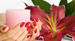 Beautiful manicure, lily and candle Stock Images