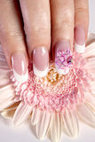 Beautiful manicure Royalty Free Stock Photo