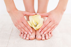 Beautiful manicure and pedicure. Stock Images