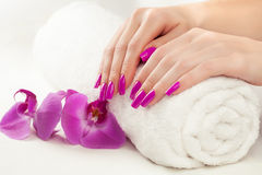 Beautiful manicure with pink orchid and towel Stock Photography