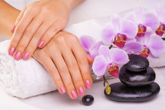Beautiful manicure with pink orchid on the white Royalty Free Stock Image
