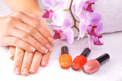 Beautiful manicure with pink orchid on the white Stock Image