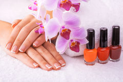 Beautiful manicure with pink orchid on the white Royalty Free Stock Images