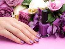 Beautiful manicure, polish is a violet color. Royalty Free Stock Photo