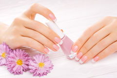 Beautiful manicure on white Royalty Free Stock Images