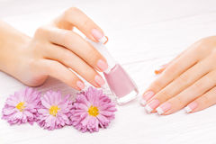 Beautiful manicure on white Royalty Free Stock Photos