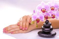 Beautiful manicure on white Stock Photography