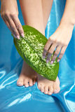 Beautiful manicured feet with a neat pedicure Royalty Free Stock Image