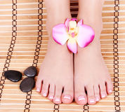Beautiful manicured female bare feet with orchid flowers and spa stones over bamboo mat royalty free stock photo