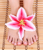 Beautiful manicured female bare feet with pink lily flower over bamboo mat Royalty Free Stock Photo