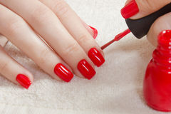 Beautiful manicured woman`s nails with red nail polish on soft white towel. Stock Photo