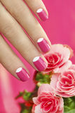 Beautiful manicures. Beautiful manicures on short nails woman with a flower on a pink background royalty free stock photography