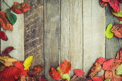 Beautiful maple leaves on vintage wooden background, Stock Image