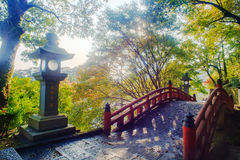 Beautiful maple place, Taiwan Royalty Free Stock Images