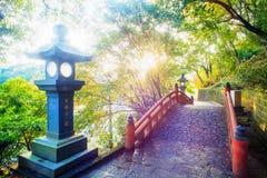 Beautiful maple place, Taiwan Royalty Free Stock Photos
