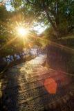 Beautiful maple place, Taiwan Royalty Free Stock Image