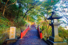 Beautiful maple place, Taiwan Royalty Free Stock Photo