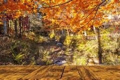 Beautiful maple season at Kumoba Pond, Karuizawa, Japan Royalty Free Stock Photo