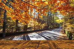 Beautiful maple season at Kumoba Pond, Karuizawa, Japan Stock Photo