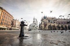 Beautiful market square with birds, Krakow, Poland Royalty Free Stock Image