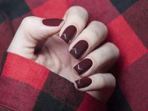 Beautiful maroon nails with chevron design. Stock Image